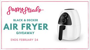 Sassy Steals Air Fryer Giveaway