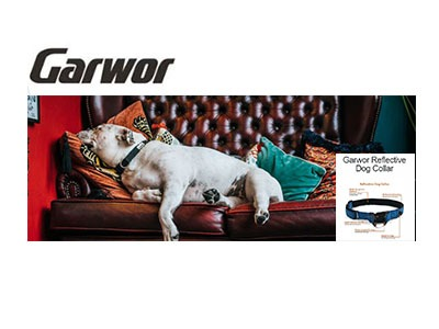 Win a Reflective Dog Collar