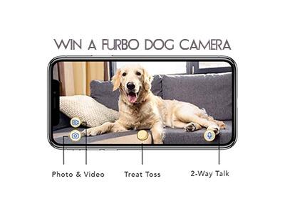 Win a Furbo Dog Camera